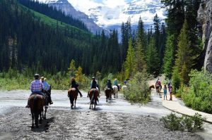 banff horse back riding